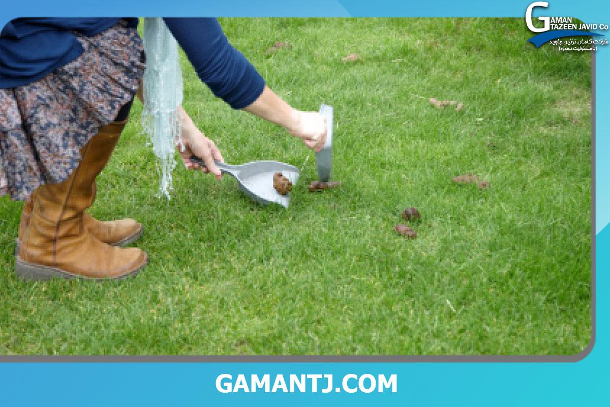 تمیز کردن لکه مدفوع حیوانات