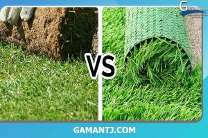 تفاوت چمن طبیعی با چمن مصنوعی